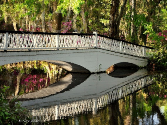 The Garden Bridge at Magnolia Gardens in South Carolina (16 x 24 canvas)