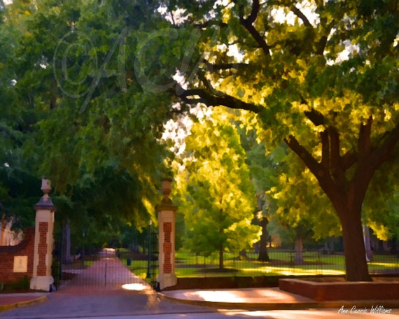 University of South Carolina's historic Horseshoe in Columbia (12 x16 canvas)