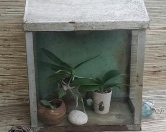 Vintage Snake Plant Etsy