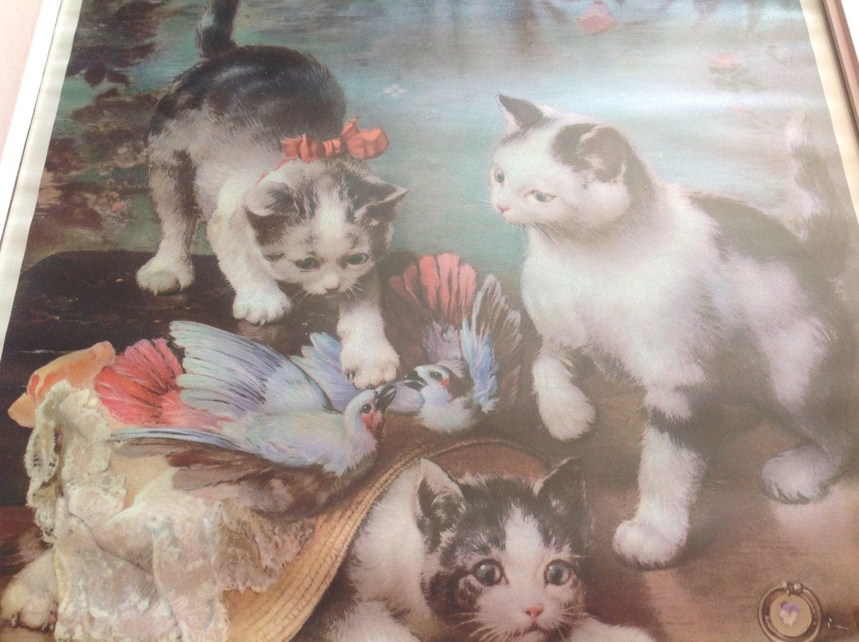 Forum on this topic: Jude Kuring, kittens-reichert/