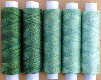 Apple Tones, Hand Dyed Cotton Machine Thread, Gradient Dyed Machine Cotton, Quilting, Lacemaking, 40 weight, Selection Pack