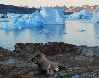 Baby Brown Seal Wildlife Plush Stuffed Animal Toy