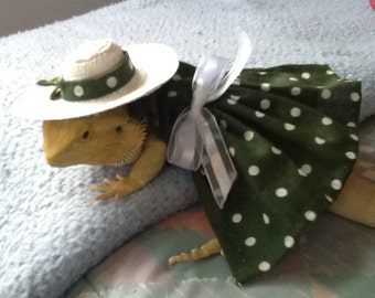 Pretty Woman modeled by Summer a Bearded Dragon...made to order
