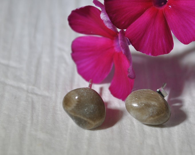 Petoskey stone stud earrings with, Up North earrings, Lake Michigan earrings, fossil, #14