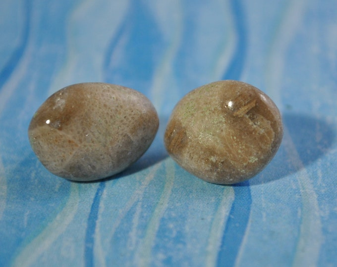 Petoskey stone stud earrings with, Up North earrings, Lake Michigan earrings, fossil, #9