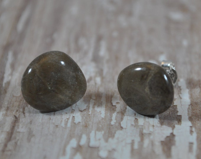 Petoskey stone stud earrings with, Up North earrings, Lake Michigan earrings, fossil, #18