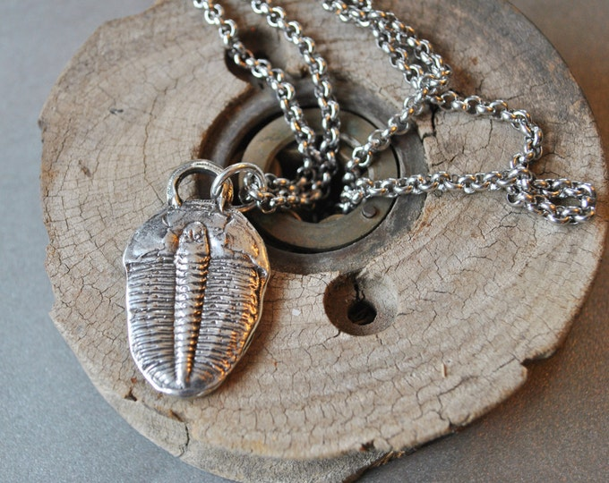 Men's sterling silver Trilobite Necklace on stainless steel chain  simple, boho, minimalist