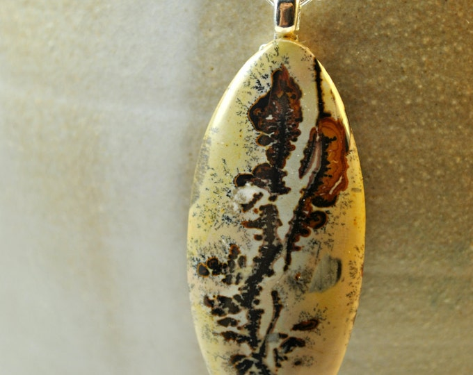 Nature's Paintbrush Stone pendant necklace with Sterling Silver 18 inch chain simple, boho, minimalist