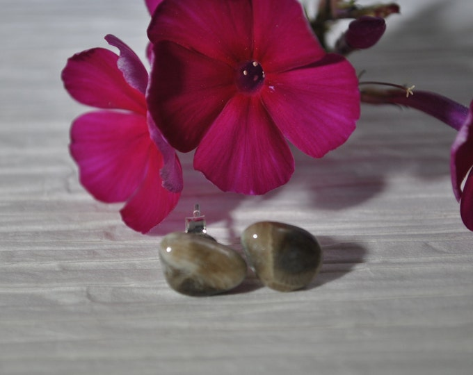 Petoskey stone stud earrings with, Up North earrings, Lake Michigan earrings, fossil, #11