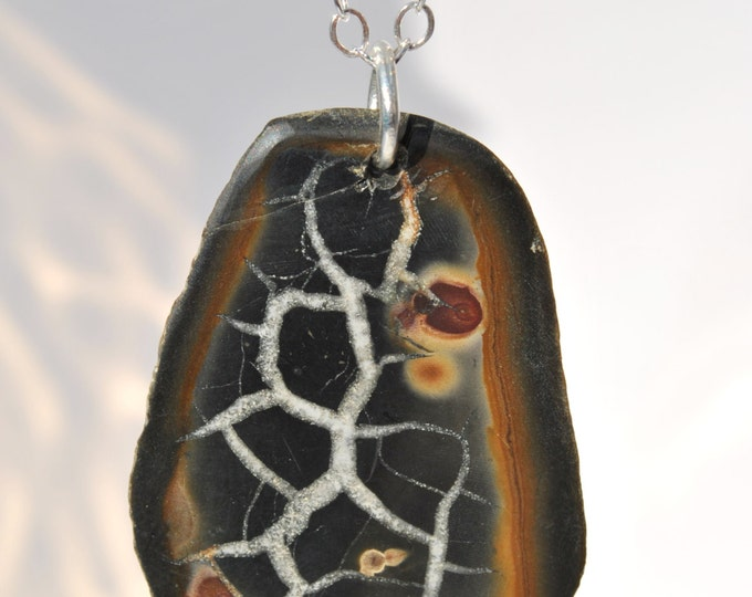 Unique Necklace of Fossilized Mud Cracks Stone on Sterling Silver Linked 18 inch chain  simple, boho, minimalist