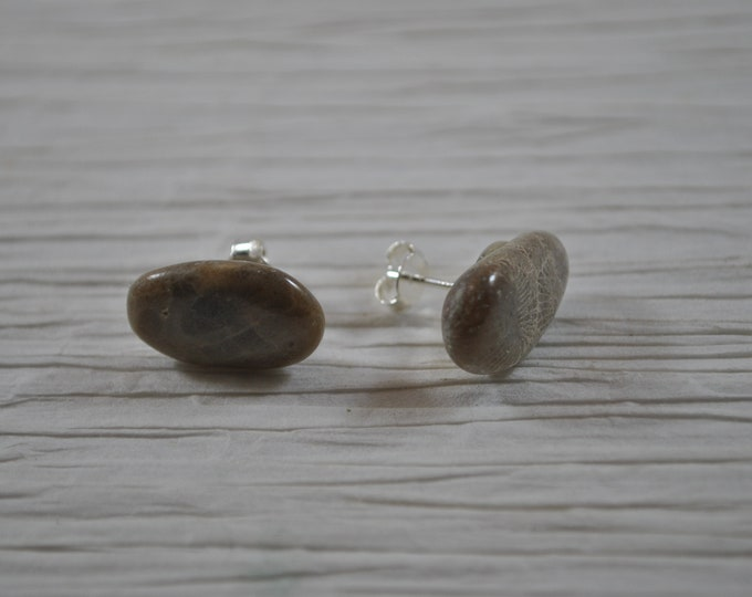 Petoskey stone stud earrings with, Up North earrings, Lake Michigan earrings, fossil, #20