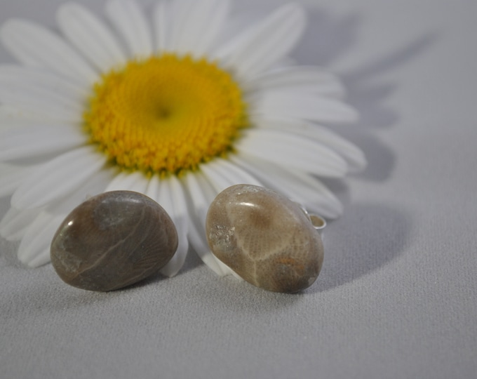Petoskey stone stud earrings with, Up North earrings, Lake Michigan earrings, fossil