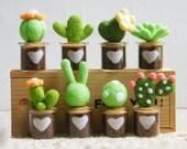 Cute Little Wool Plants Needle Felting DIY Kit