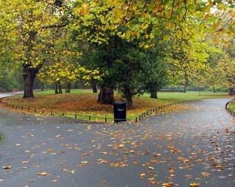 A Road Divided - St. Stephen's Green Park, Dublin Ireland - 16x20