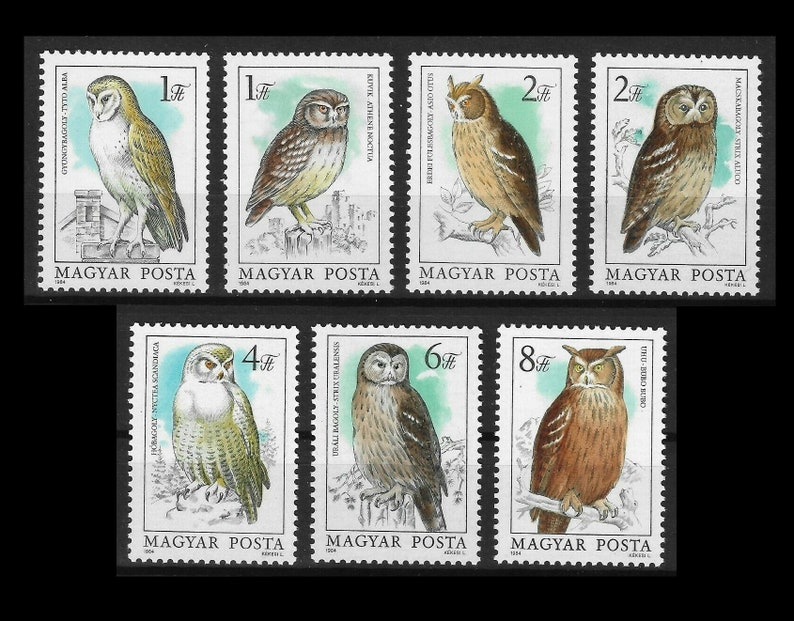 Gorgeous Owl Postage Stamps from 1984 Hungary / Bird Images image 0