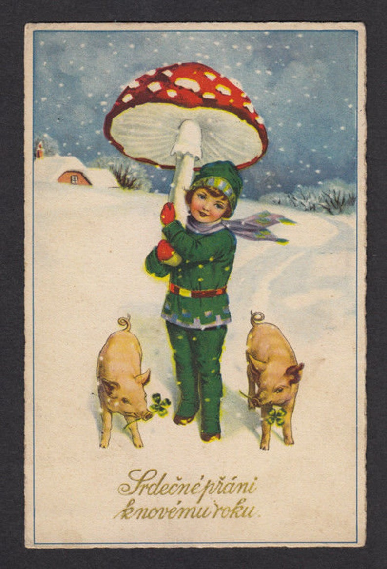 Early 20th Century Czech Postcards / Happy New Year image 0