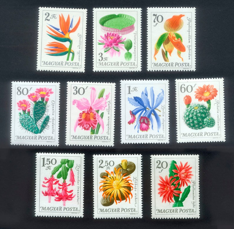 Exquisite Flower Postage Stamps from Hungary / Water Lily image 0