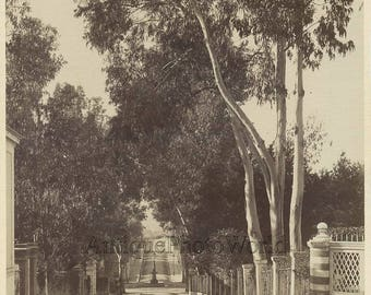 Hyeres France city street view antique albumen photo