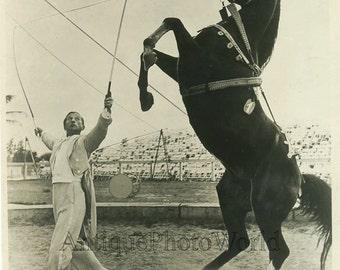 Circus horse trainer vintage photo