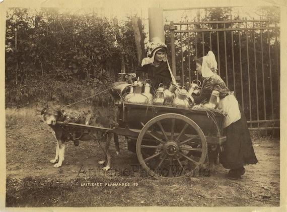 Belgie Meisjes Met Hond Gedreven Melk Kar Antieke Etnische Etsy