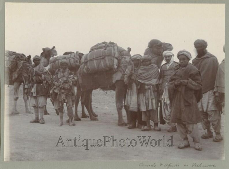 Pakistan Afridi men with camels Peshawar antique ethnic photo