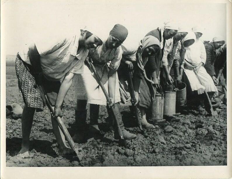 Russian women peasants with shovels antique photo