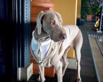 Stone (Khaki color) Dog Tuxedo - custom sizing - Choice of Tie included