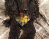 NEW Buchanan Tartan Dog B...