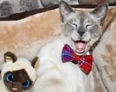 Galloway Tartan Cat Bow T...