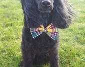 Jacobite Tartan Dog Bow T...