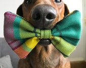 NEW MacMillan Tartan Dog ...