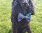 Isle Of Skye Tartan Dog B...