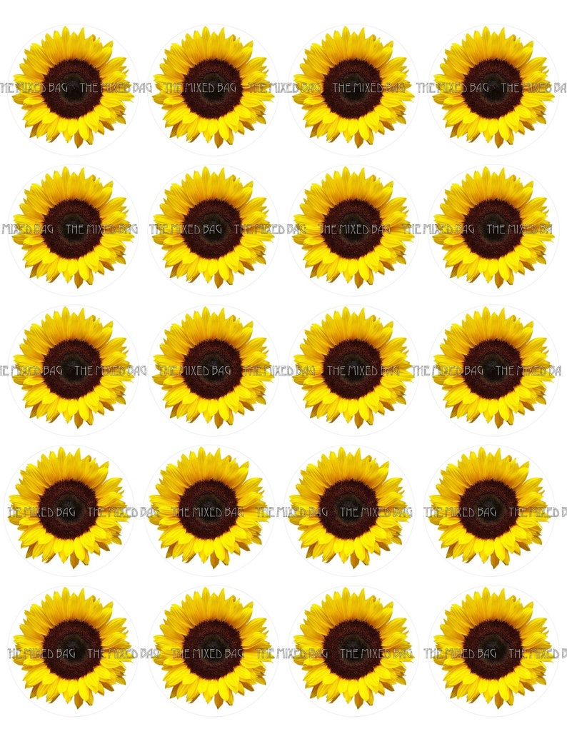image about Printable Sunflower known as 20 Sunflower Cupcake Toppers Clip Artwork Printable Pictures JPG downloadable 300 DPI w/ Reducing Advisor Line for Stickers, Buttons, Tags