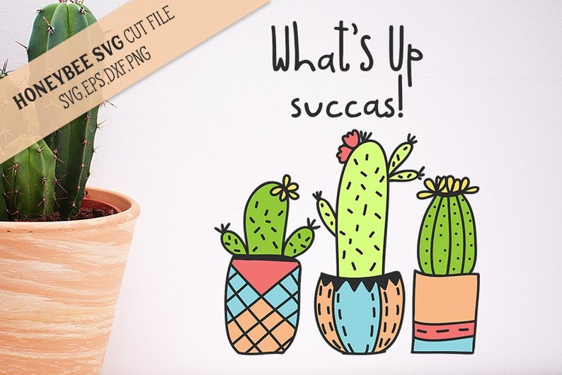 What/'s Up Succas SVG Cut File