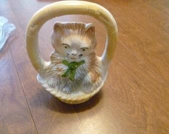 Very Cute Cat in a Basket