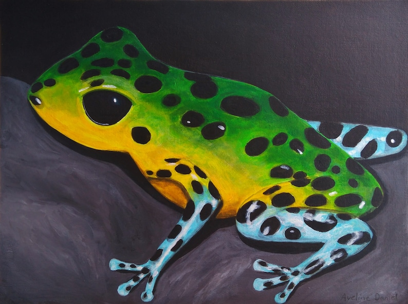 Green Yellow and Blue Poison Dart Frog  Original Acrylic image 0
