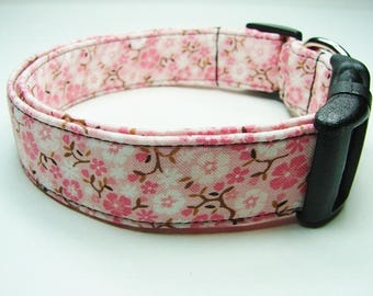 Pink & White Cowgirl Daisies Dog Collar