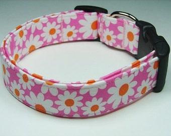 Charming Pink with White, Orange Daisies Dog Collar