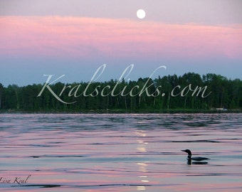 Loon Photograph Lake Strawberry Moon Loons Silhouette Fine Art Photography Home Cabin Office Wall Decor pink blue green black nature loons