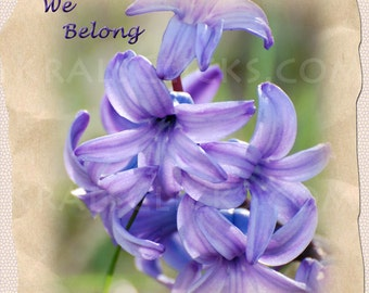 Love Quote Photograph, We Belong, Valentine, Purple Flowers Photograph,Fine Art Photography, Digital Art Photography, Home Office Wall Decor
