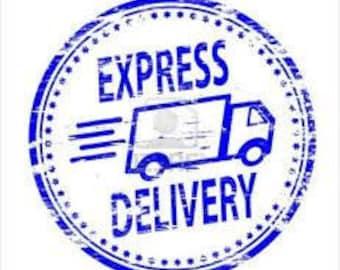International express shipping 6-10days