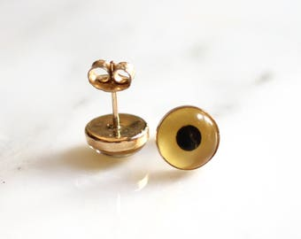 14K Gold-Filled Taxidermy Bird Eye Earrings - Hypoallergenic