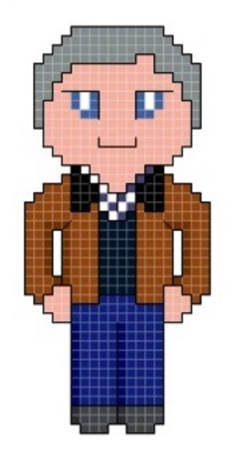 Doctor's Companion  Graham Cross Stitch Pattern only image 0