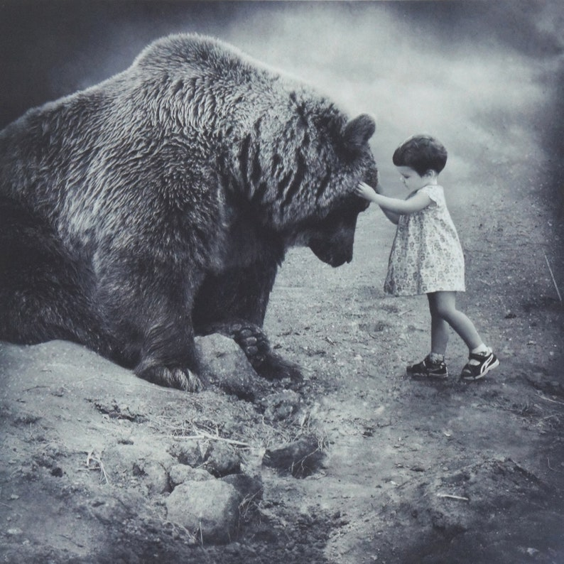 BEAR HUG  Contemporary Animal Fine Art Photograph Signed Ltd image 0