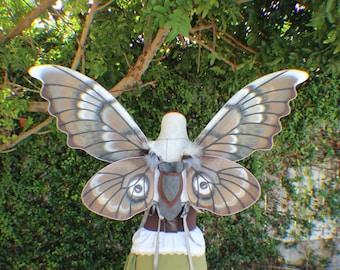 Custom XXL Hand Painted Fantasy Desert Moth Inspired Wings