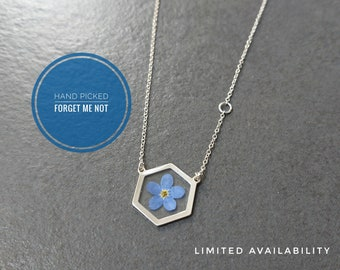 Real Forget Me Not Hexagon Necklace in Sterling silver | Myosotis | Something Blue