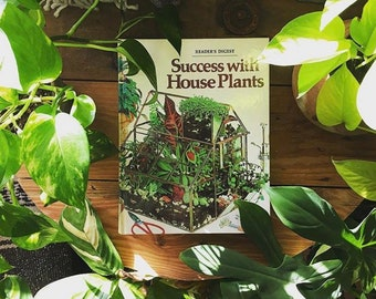 Terrific Success House Plants Etsy Interior Design Ideas Clesiryabchikinfo