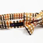 Dog Collar Bow Tie Set Aiden