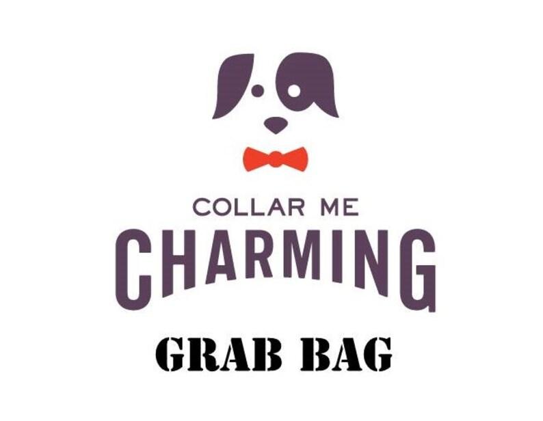 Dog Collar Grab Bag  We Pick 2 image 0