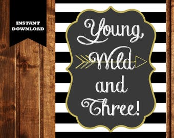 Young Wild & Three Sign - DIGITAL FILE - Third Birthday Party Decor - Third Birthday Party - Third Birthday Sign - Boy Birthday Party